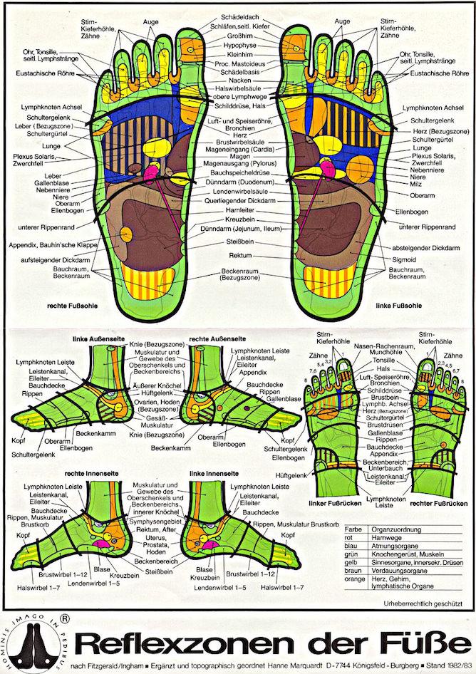 Fußreflexzonenmassage: Karte der Reflexzonen